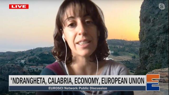 Embedded thumbnail for 'Ndrangheta, Calabria, economy, European Union (with Anna Sergi)